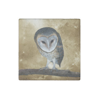 Cute little Barn Owl fantasy Stone Magnet