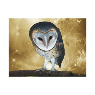Cute little Barn Owl Gallery Wrapped Canvas