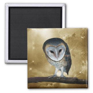 Cute little Barn Owl Square Magnet