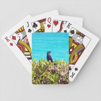 Cute Little Black Bird Poker Deck