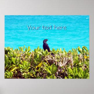 Cute Little Black Bird Poster