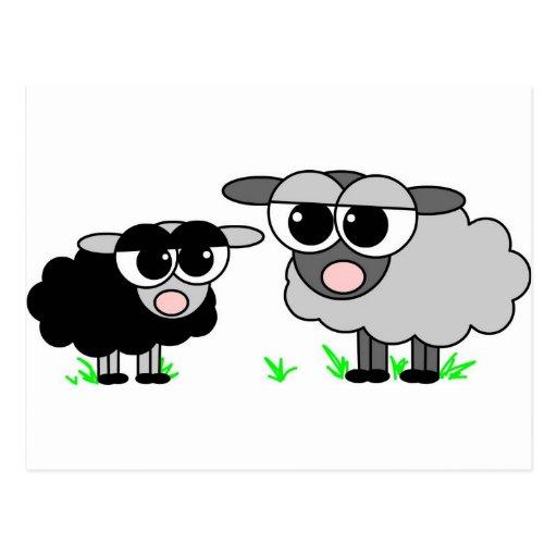 Cute Little Black Sheep and BigGray Sheep Post Card