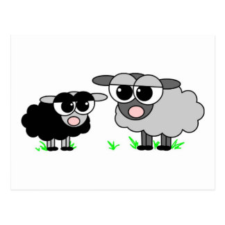 Cute Little Black Sheep & Big Gray Sheep Postcard