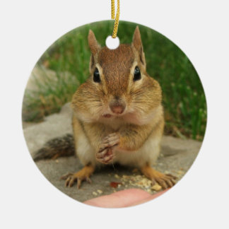 Cute Little Cheeky Chipmunk Christmas Ornament