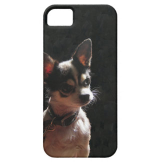 Cute Little Chihuahua Dog Barely There iPhone 5 Case