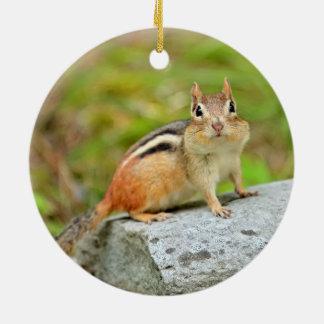 Cute Little Chipmunk Posing on a Rock Christmas Ornament