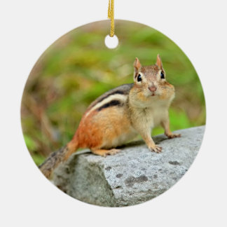 Cute Little Chipmunk Posing on a Rock Round Ceramic Decoration