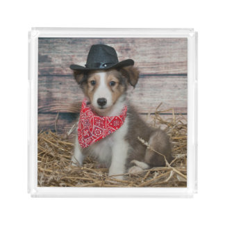 Cute Little Cowboy Puppy Acrylic Tray