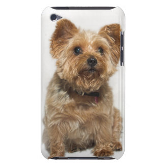 Cute Little Dog iPod Touch Case