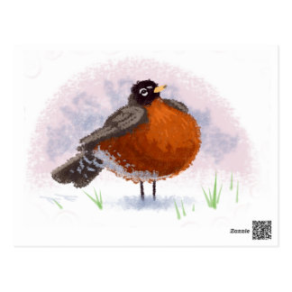 Cute little Fat Robin Postcard