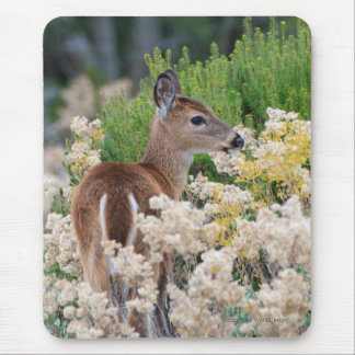 Cute Little Fawn Mouse Pad