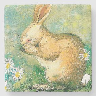 Cute little friend rabbit Marble Stone Coaster