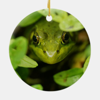 Cute Little Green Frog Round Ceramic Decoration