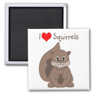 Cute Little Grey Squirrel Cartoon Animal Magnet