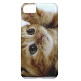 cute little kitten cat pet ginger tabby iPhone 5C case