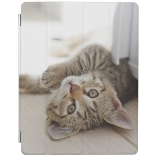 Cute Little Kitten iPad Cover