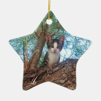 Cute little kitten playing in the woods christmas ornament