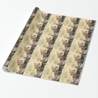 CUTE LITTLE LION CUB RANGE WRAPPING PAPER