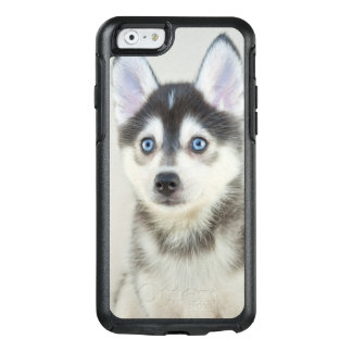 Cute Little Pomsky Puppy OtterBox iPhone 6/6s Case