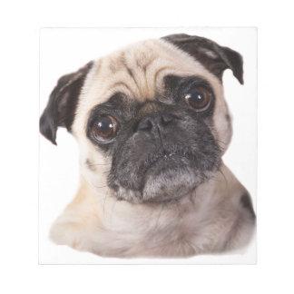 cute little pug dog notepad