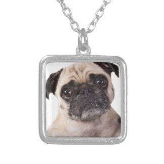 cute little pug dog silver plated necklace