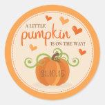 Cute Little Pumpkin Birth Announcement Stickers