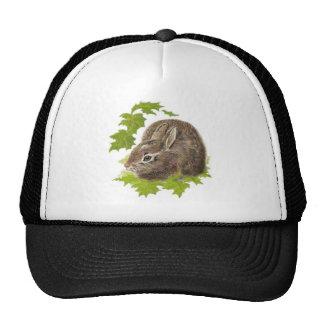 Cute Little Rabbit, Bunny, Animal Nature, Wildlife Cap