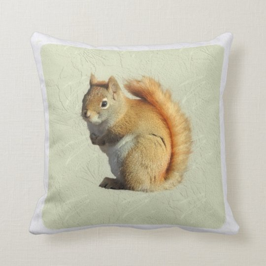 Cute Little Red Squirrel Sage Green Square Cushion