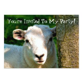 CUTE LITTLE SHEEP 13 CM X 18 CM INVITATION CARD