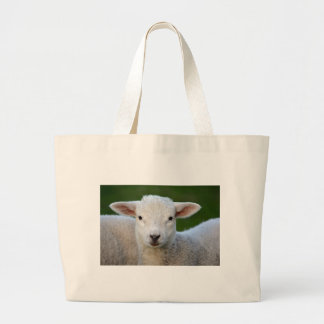 Cute little Sheep Large Tote Bag