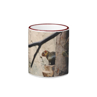 Cute Little Squirrel Ringer Mug