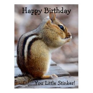 Cute Little Stinker Chipmunk Birthday Postcard
