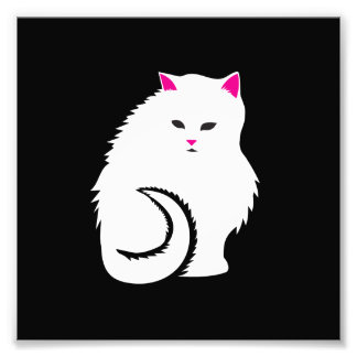 Cute Little White and Fluffy Kitty Cat Photo Print