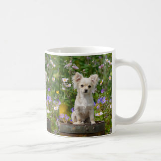 Cute long-haired cream Chihuahua Dog Puppy Photo _ Coffee Mug