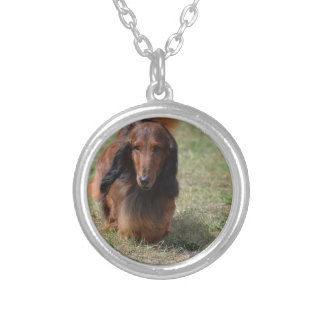 Cute Long Haired Daschund Round Pendant Necklace