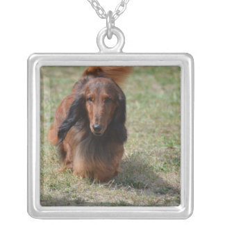 Cute Long Haired Daschund Square Pendant Necklace