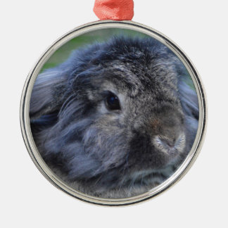 Cute lop eared rabbit christmas ornament