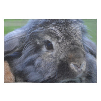 Cute lop eared rabbit placemat