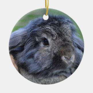 Cute lop eared rabbit round ceramic decoration