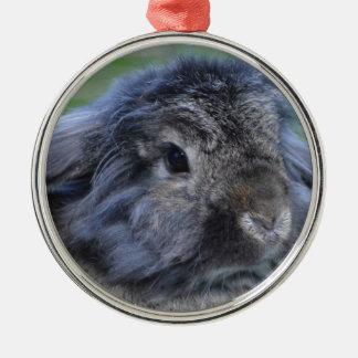 Cute lop eared rabbit Silver-Colored round decoration