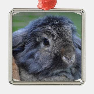 Cute lop eared rabbit Silver-Colored square decoration