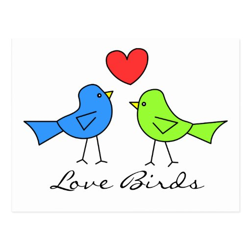 Cute Love Birds Post Cards