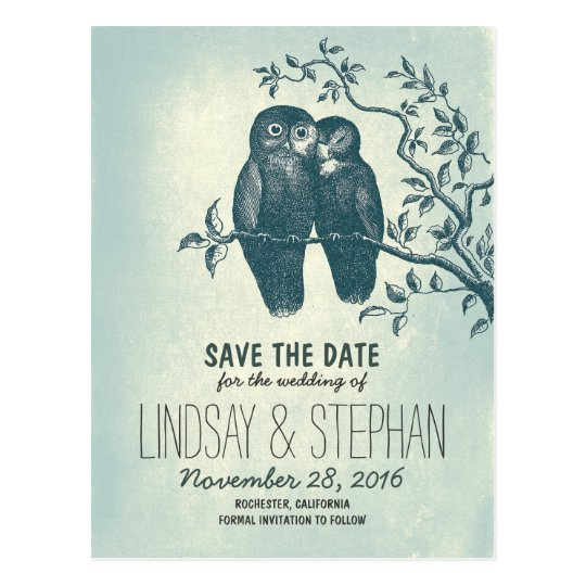 cute love owls couple save the date postcards