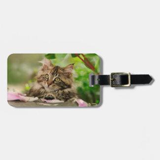 Cute Maine Coon kitten Bag Tag