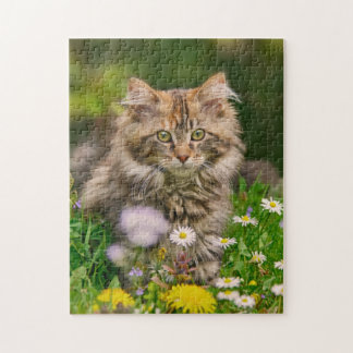 Cute Maine Coon Kitten Cat Flowers - Game Jigsaw Jigsaw Puzzle