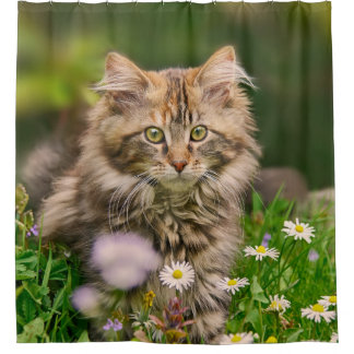 Cute Maine Coon Kitten Cat in a Flower Meadow Tub Shower Curtain