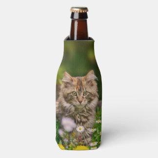 Cute Maine Coon Kitten Cat in Meadow Bottle-Jacket
