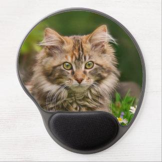 Cute Maine Coon Kitten Cat Portrait - ergonomic Gel Mouse Mat