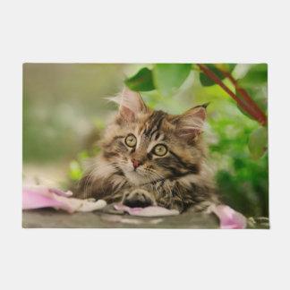 Cute Maine Coon kitten Doormat