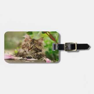 Cute Maine Coon kitten Tags For Bags